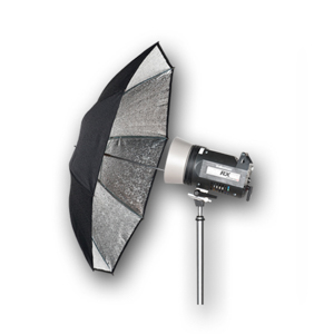 Black and Silver Umbrella